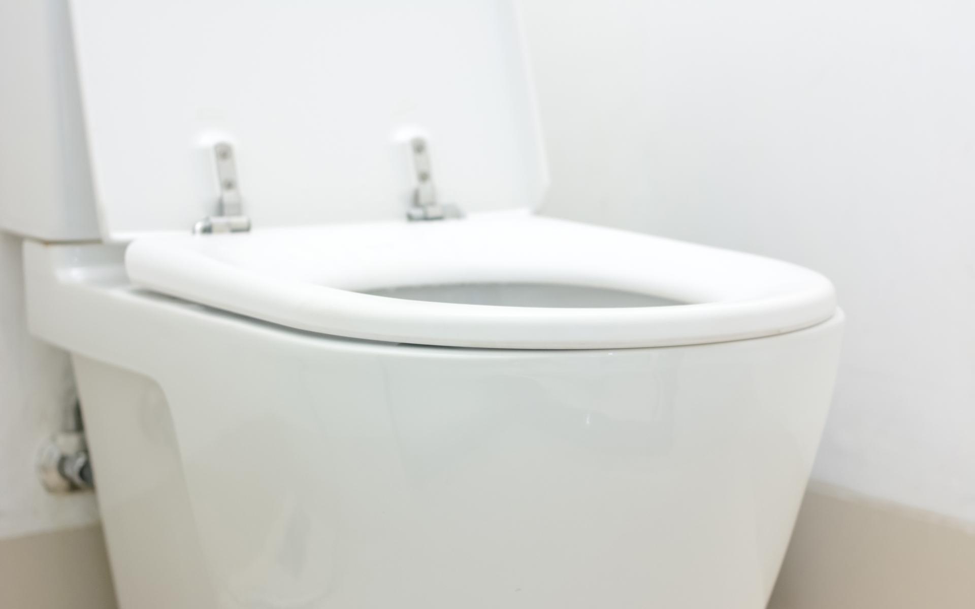 Maple Ridge Toilet Repair